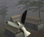 Şehir Güvercinleri 2