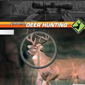 deer hunter 2014 3d oyna